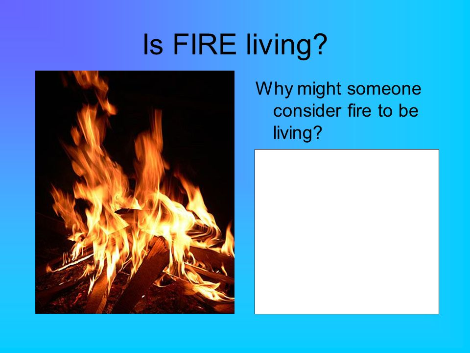 Is FIRE living? Why might someone consider fire to be living?