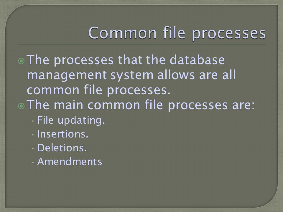 The processes that the database management system allows are all common file processes.
