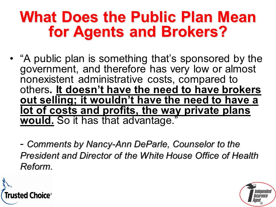 What Does the Public Plan Mean for Agents and Brokers? A public plan is something thats sponsored by the government, and therefore has very low or alm