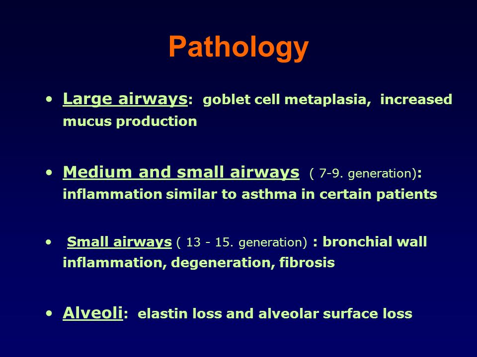 Pathology Large airways : goblet cell metaplasia, increased mucus production Medium and small airways ( 7-9. generation) : inflammation similar to ast