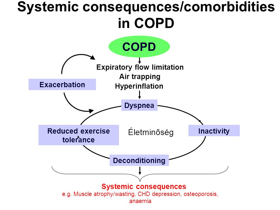 Systemic consequences/comorbidities in COPD Systemic consequences Életminőség e.g. Muscle atrophy/wasting, CHD depression, osteoporosis, anaemia Air t