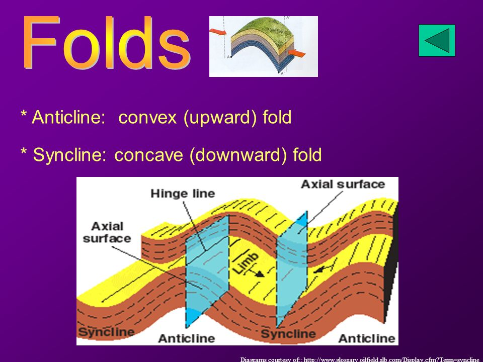 * Anticline: convex (upward) fold * Syncline: concave (downward) fold Diagrams courtesy of::   Term=syncline