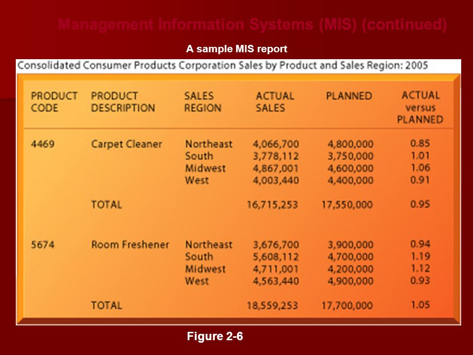 Management Information Systems (MIS) (continued) Figure 2-6 A sample MIS report