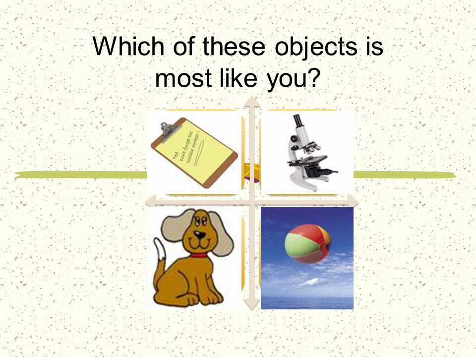 Which of these objects is most like you?