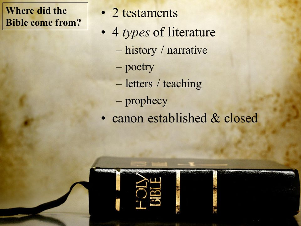 2 testaments 4 types of literature –history / narrative –poetry –letters / teaching –prophecy canon established & closed Where did the Bible come from