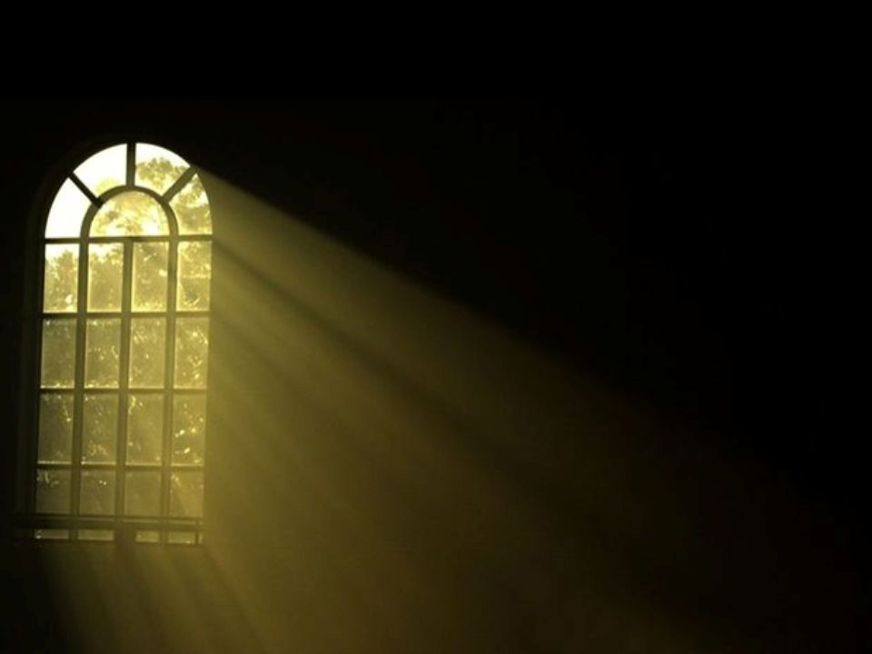 Psalm 119:105 Your word is a lamp to my feet And a light to my path.