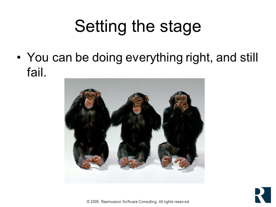 © 2008, Rasmusson Software Consulting, All rights reserved High-Level Risks What could go wrong.