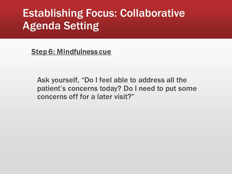 Establishing Focus: Collaborative Agenda Setting Step 6: Mindfulness cue Ask yourself, Do I feel able to address all the patients concerns today.