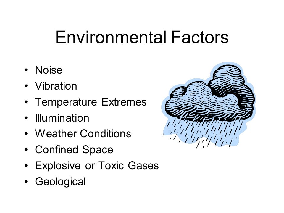 Environmental Factors Noise Vibration Temperature Extremes Illumination Weather Conditions Confined Space Explosive or Toxic Gases Geological