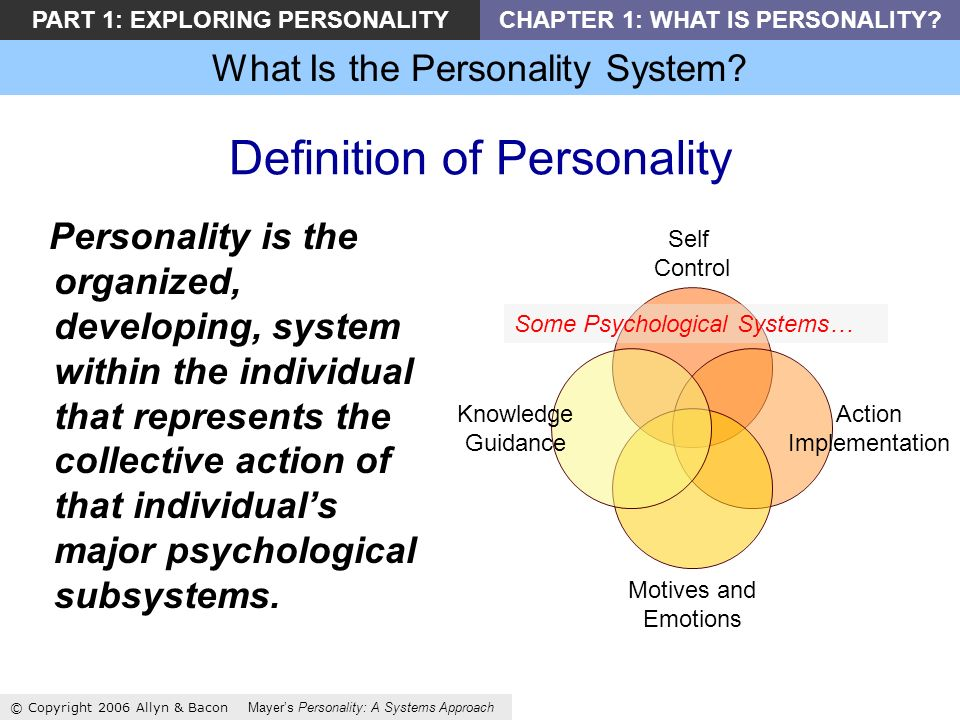 What Is the Personality System.