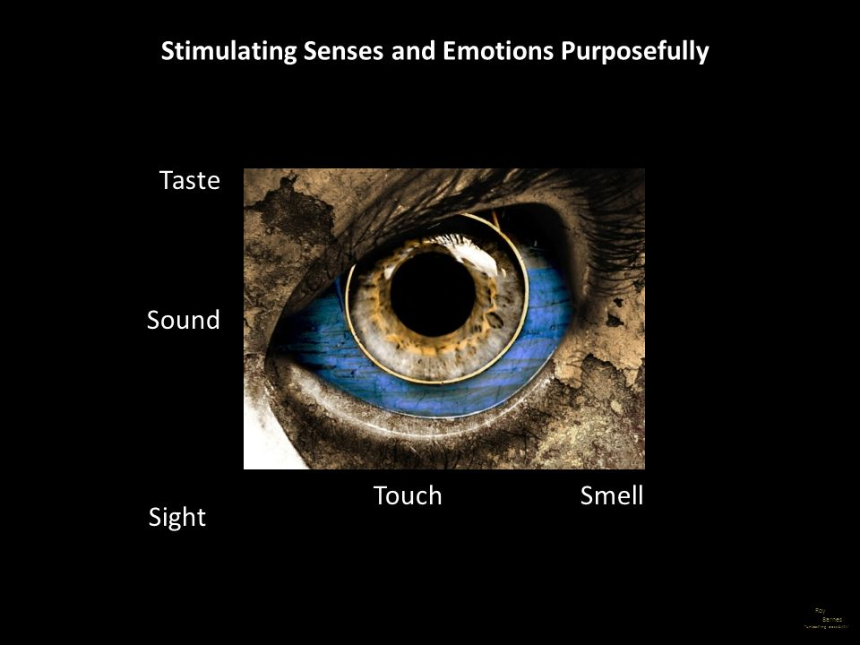 Roy Barnes unleashing possibility Stimulating Senses and Emotions Purposefully Sight Sound Taste TouchSmell