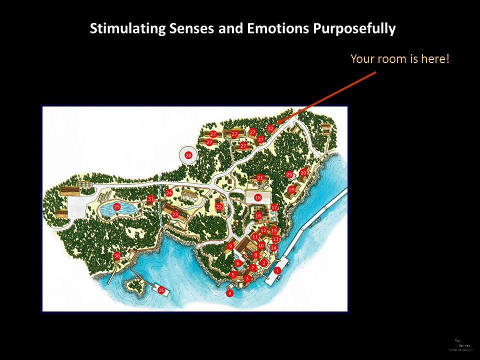 Roy Barnes unleashing possibility Stimulating Senses and Emotions Purposefully Your room is here!