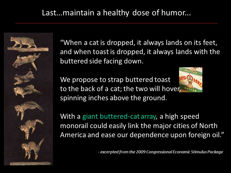 Last…maintain a healthy dose of humor... When a cat is dropped, it always lands on its feet, and when toast is dropped, it always lands with the butte