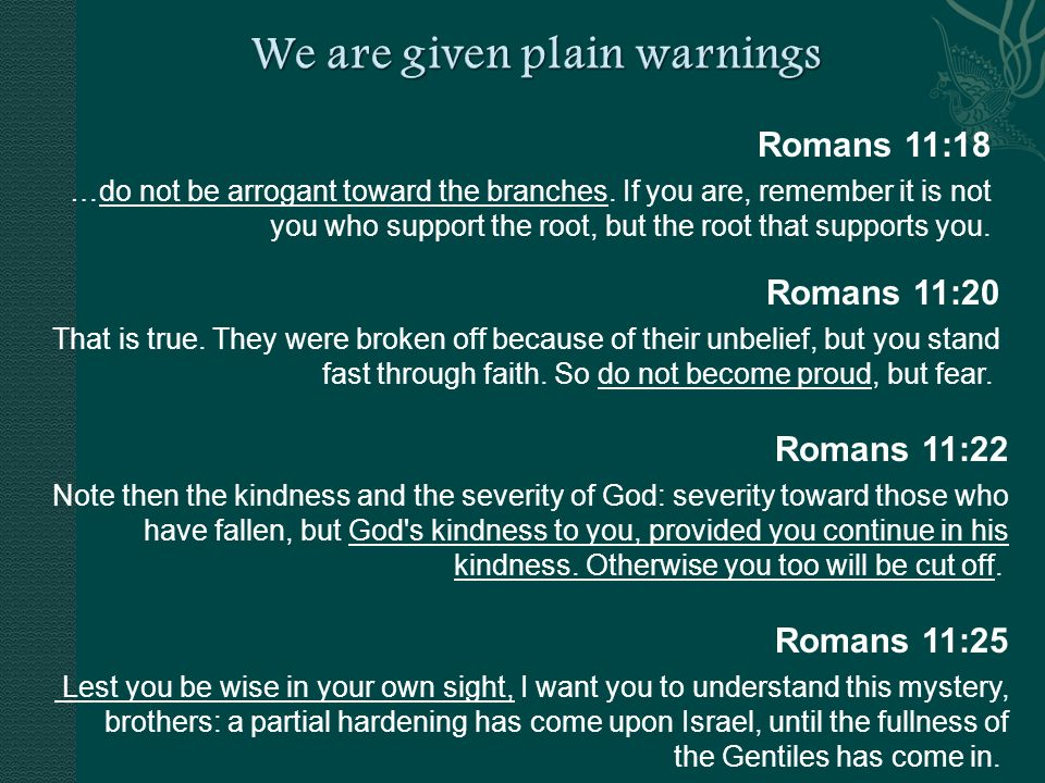 Romans 11:18 …do not be arrogant toward the branches.