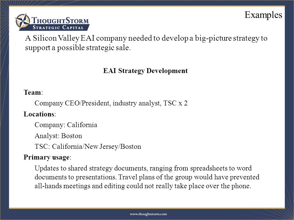 A Silicon Valley EAI company needed to develop a big-picture strategy to support a possible strategic sale. EAI Strategy Development Team: Company CEO