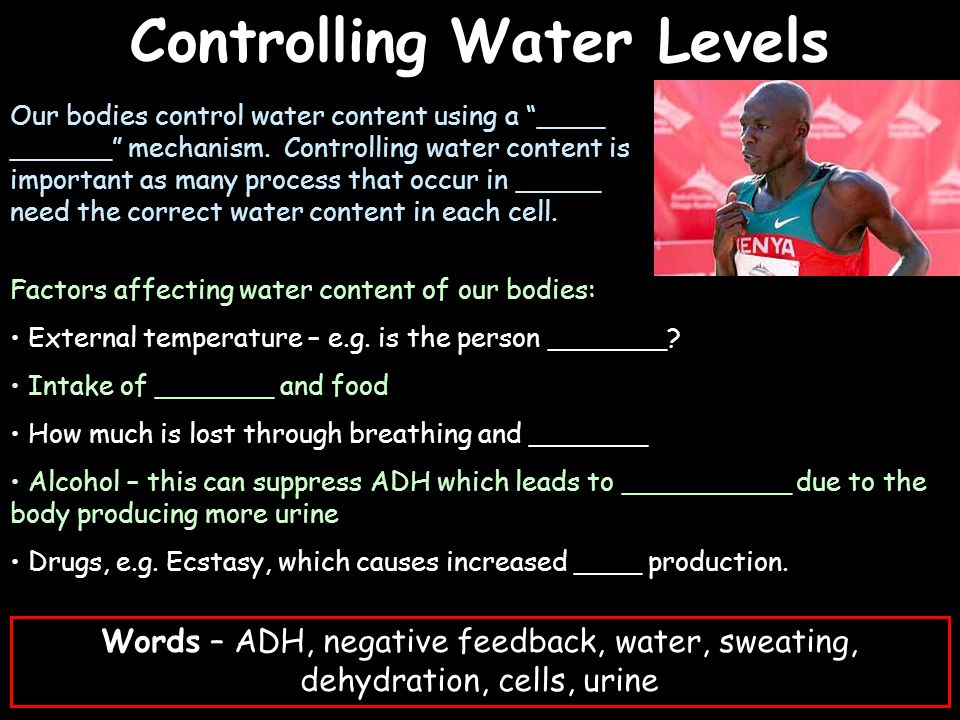 Controlling Water Levels Factors affecting water content of our bodies: External temperature – e.g. is the person _______? Intake of _______ and food