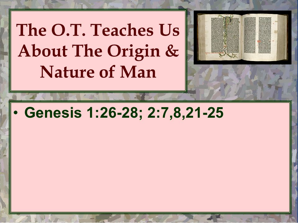 The O.T. Teaches Us About The Origin & Nature of Man Genesis 1:26-28; 2:7,8,21-25