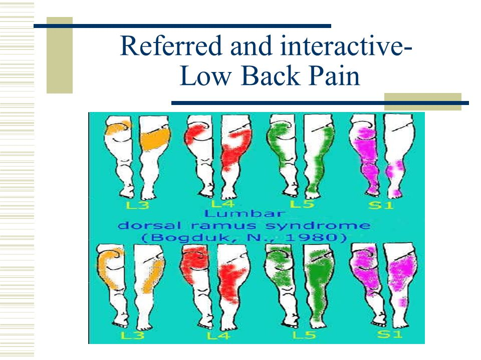 Referred and interactive- Low Back Pain