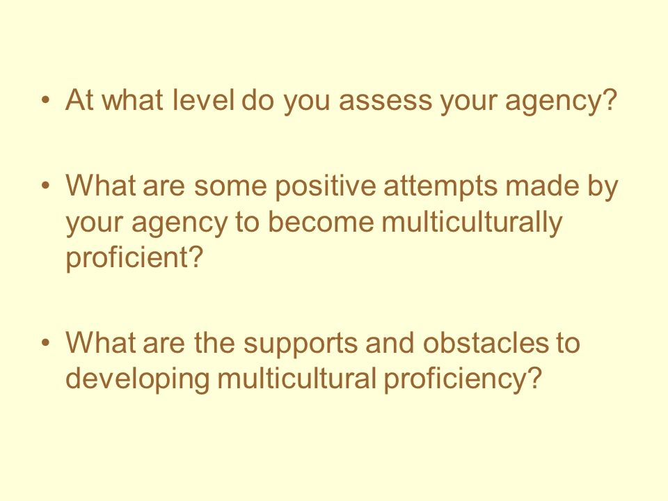 At what level do you assess your agency? What are some positive attempts made by your agency to become multiculturally proficient? What are the suppor