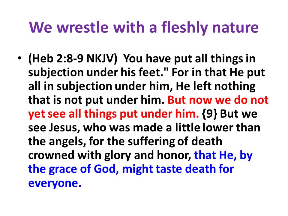We wrestle with a fleshly nature (Heb 2:8-9 NKJV) You have put all things in subjection under his feet.