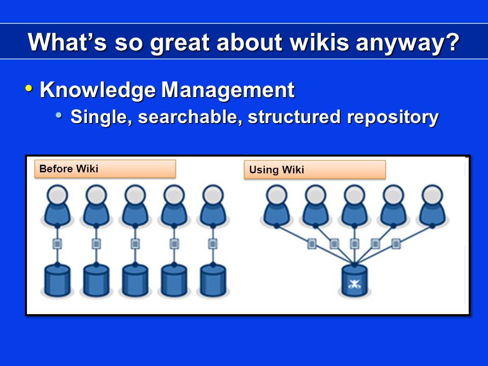 Whats so great about wikis anyway.