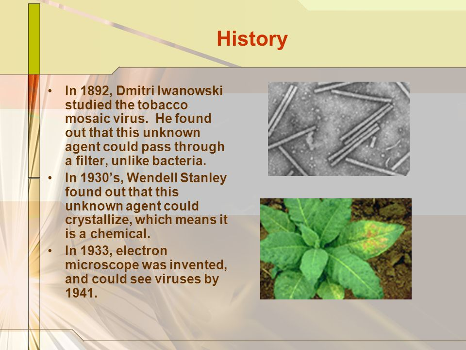 History In 1892, Dmitri Iwanowski studied the tobacco mosaic virus. He found out that this unknown agent could pass through a filter, unlike bacteria.