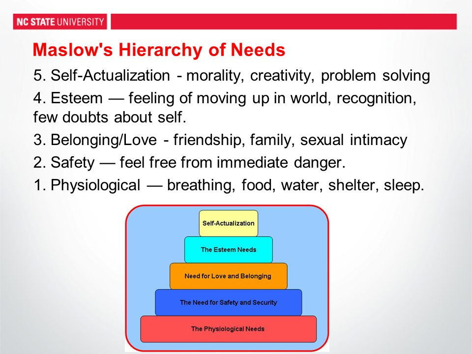 Maslow s Hierarchy of Needs 5. Self-Actualization - morality, creativity, problem solving 4.