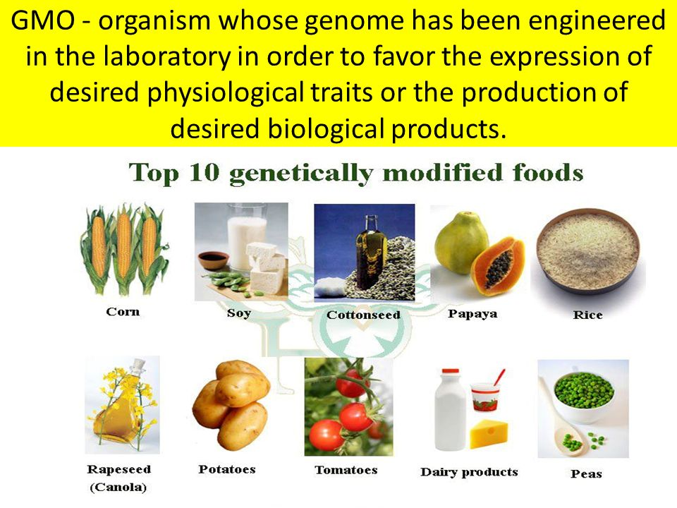 GMO - organism whose genome has been engineered in the laboratory in order to favor the expression of desired physiological traits or the production o