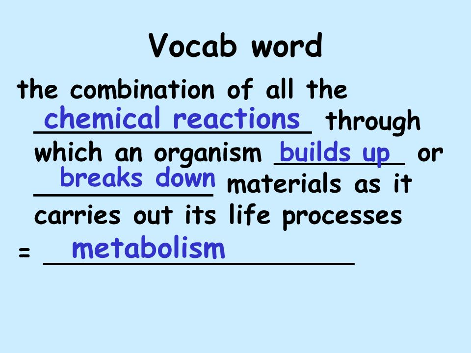 Vocab word the combination of all the _________________ through which an organism ________ or ___________ materials as it carries out its life processes = ___________________ metabolism chemical reactions builds up breaks down