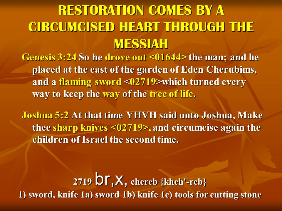 RESTORATION COMES BY A CIRCUMCISED HEART THROUGH THE MESSIAH Genesis 3:24 So he drove out the man; and he placed at the east of the garden of Eden Che