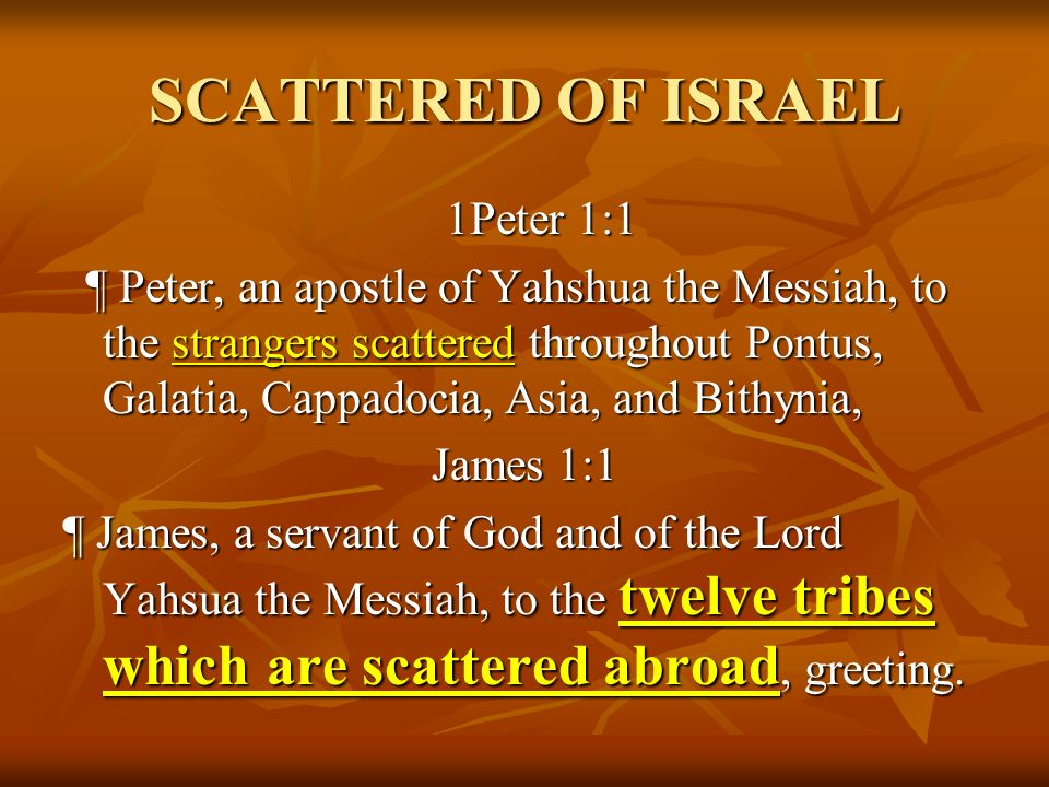 THE CURSES OF AN ADULTEROUS WOMAN Hosea 2:2 Plead with your mother, plead: for she is not my wife neither am I her husband: let her therefore put away her whoredoms out of her sight and her adulteries from between her breasts; Hosea 2:3 Lest I strip her naked, and set her as in the day that she was born, and make her as a wilderness and set her like a dry land, and slay her with thirst.
