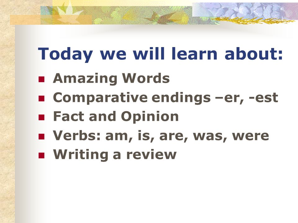 Today we will learn about: Amazing Words Comparative endings –er, -est Fact and Opinion Verbs: am, is, are, was, were Writing a review