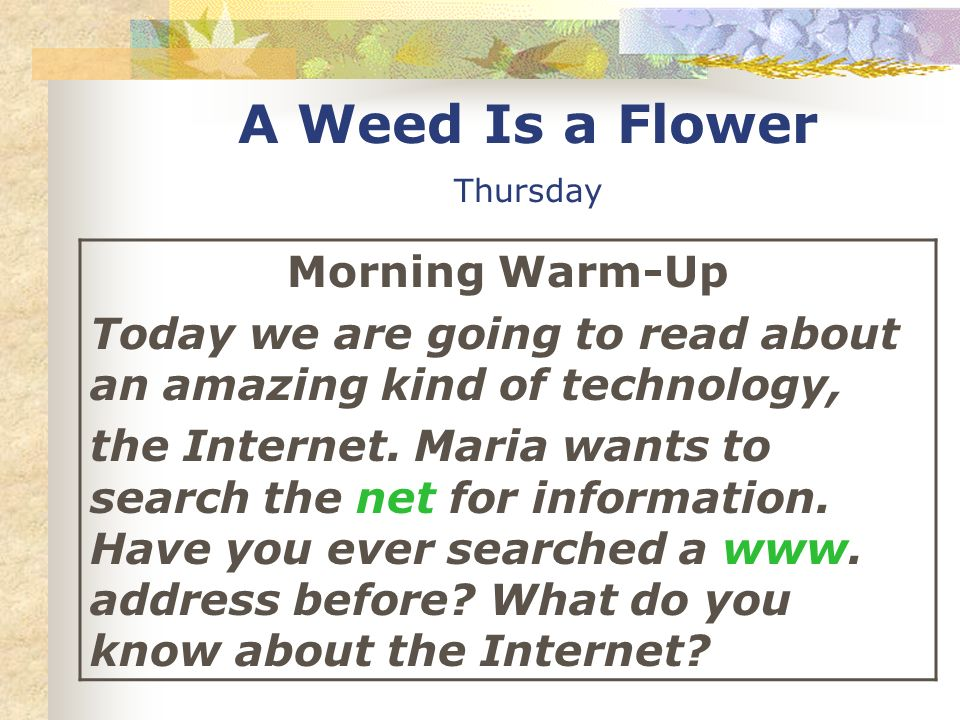 A Weed Is a Flower Thursday Morning Warm-Up Today we are going to read about an amazing kind of technology, the Internet. Maria wants to search the ne