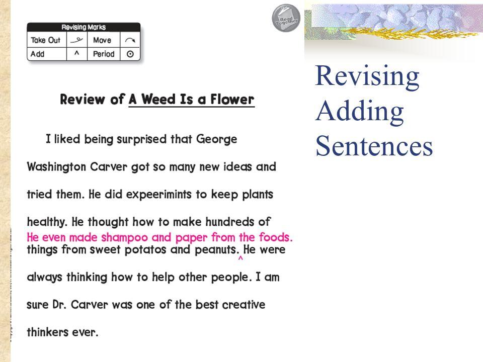Revising Adding Sentences