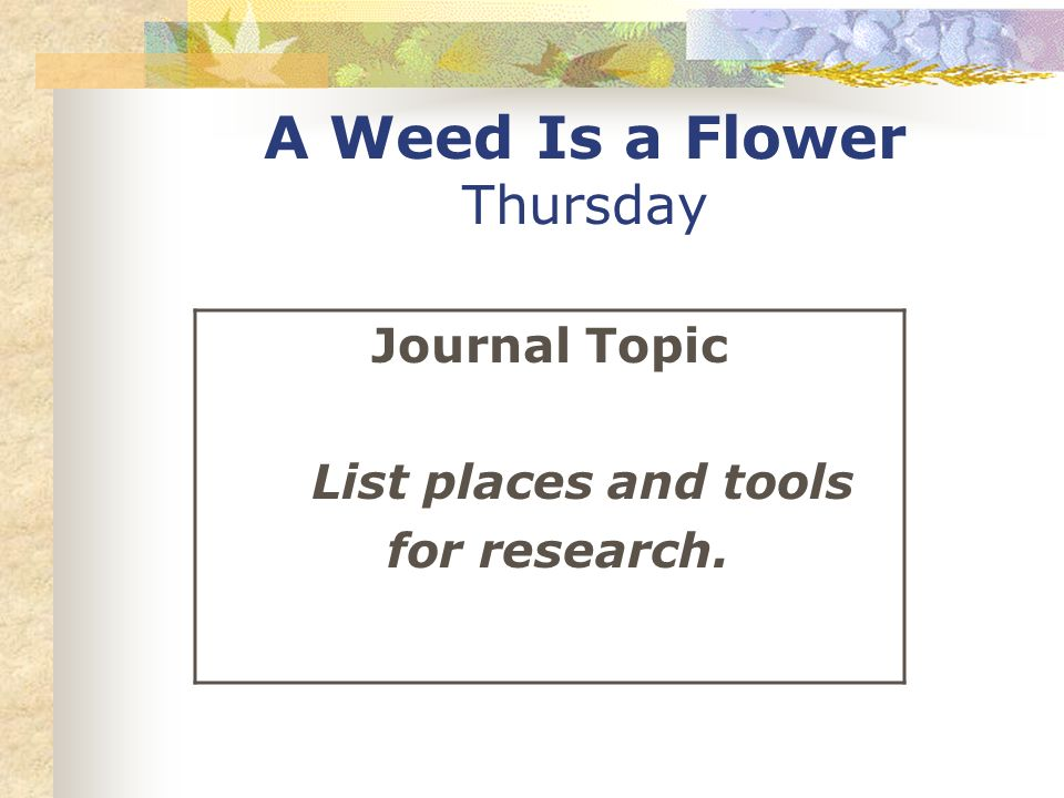 A Weed Is a Flower Thursday Journal Topic List places and tools for research.