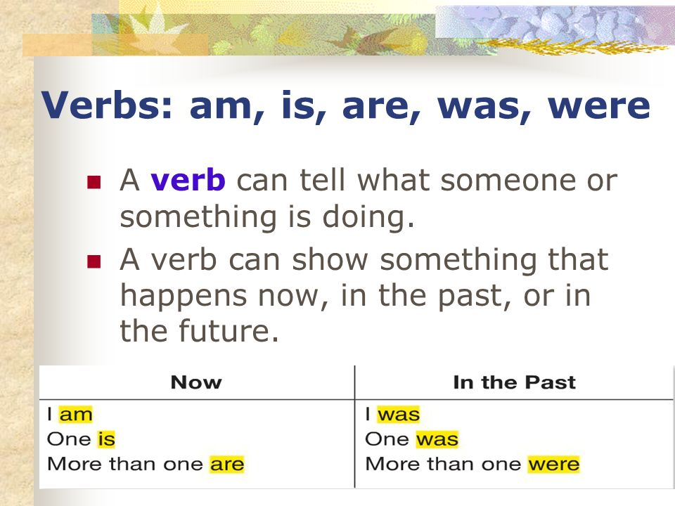 Verbs: am, is, are, was, were A verb can tell what someone or something is doing.