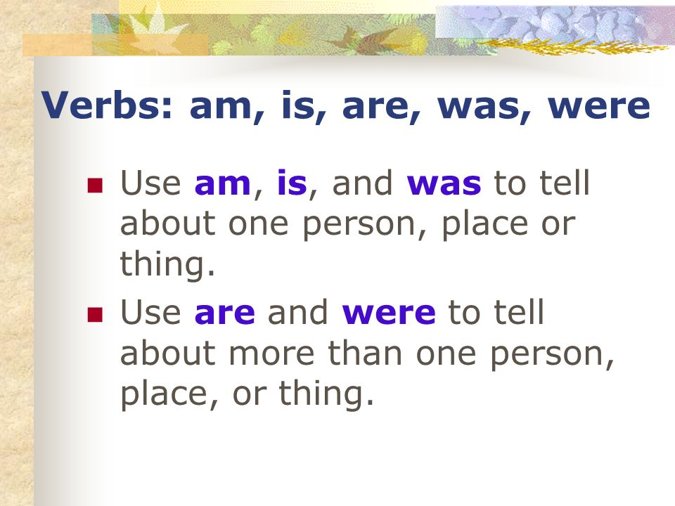 Verbs: am, is, are, was, were Use am, is, and was to tell about one person, place or thing.