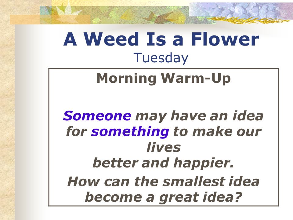 A Weed Is a Flower Tuesday Morning Warm-Up Someone may have an idea for something to make our lives better and happier. How can the smallest idea beco