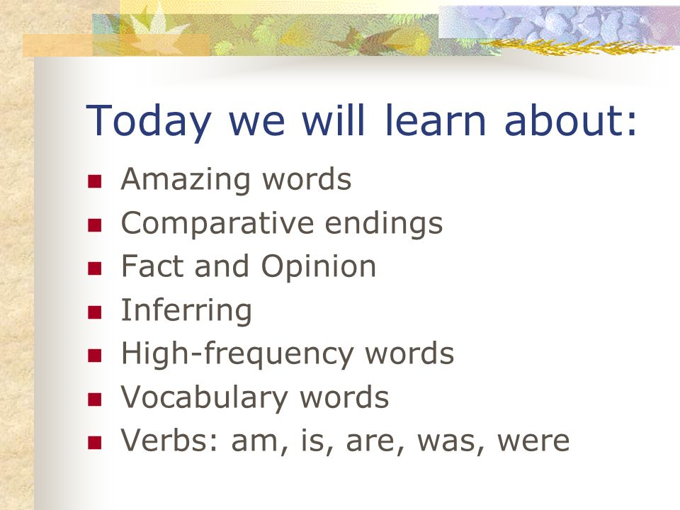 Today we will learn about: Amazing words Comparative endings Fact and Opinion Inferring High-frequency words Vocabulary words Verbs: am, is, are, was, were