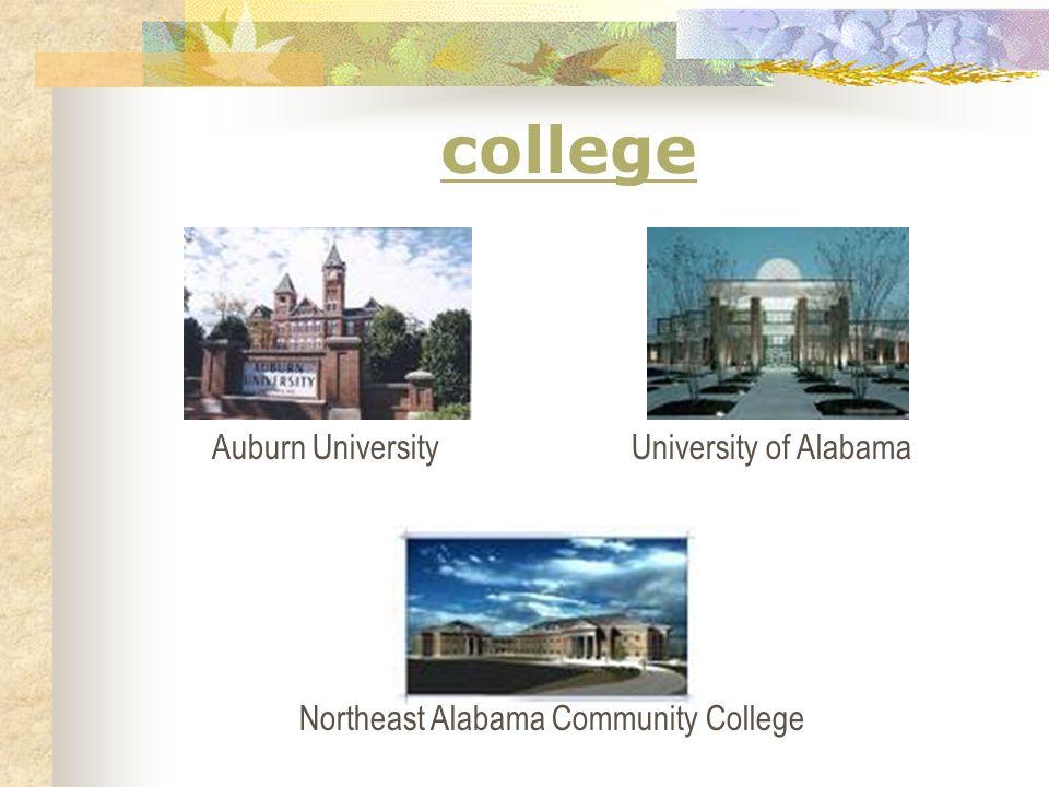 college Auburn UniversityUniversity of Alabama Northeast Alabama Community College