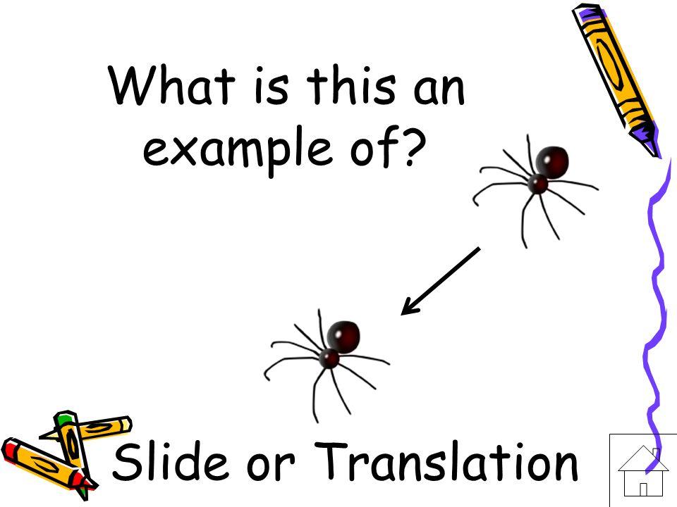 I am another word for translation. Slide