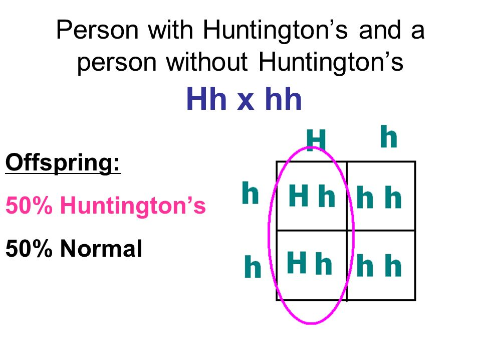 Person with Huntingtons and a person without Huntingtons Hh x hh Offspring: 50% Huntingtons 50% Normal