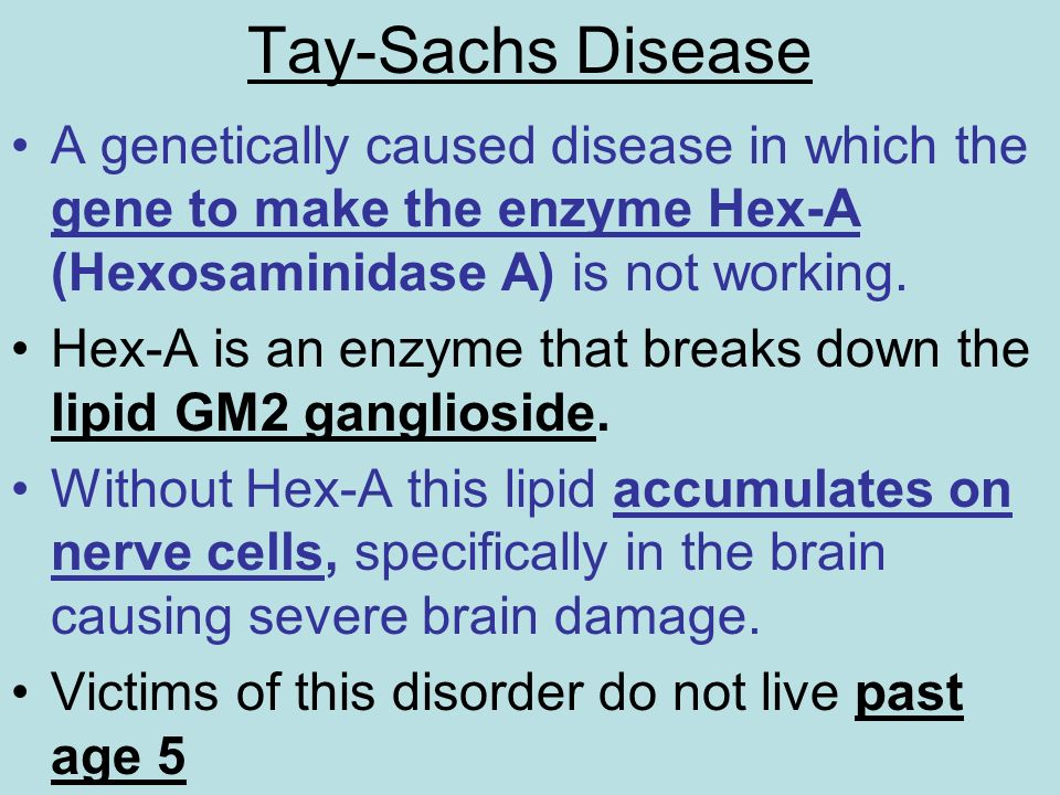 Tay-Sachs Disease A genetically caused disease in which the gene to make the enzyme Hex-A (Hexosaminidase A) is not working. Hex-A is an enzyme that b