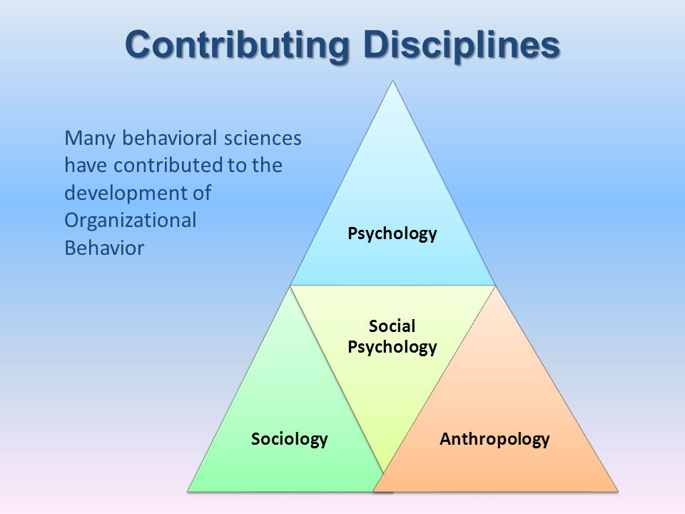 Contributing Disciplines PsychologySociology Social Psychology Anthropology Many behavioral sciences have contributed to the development of Organizati