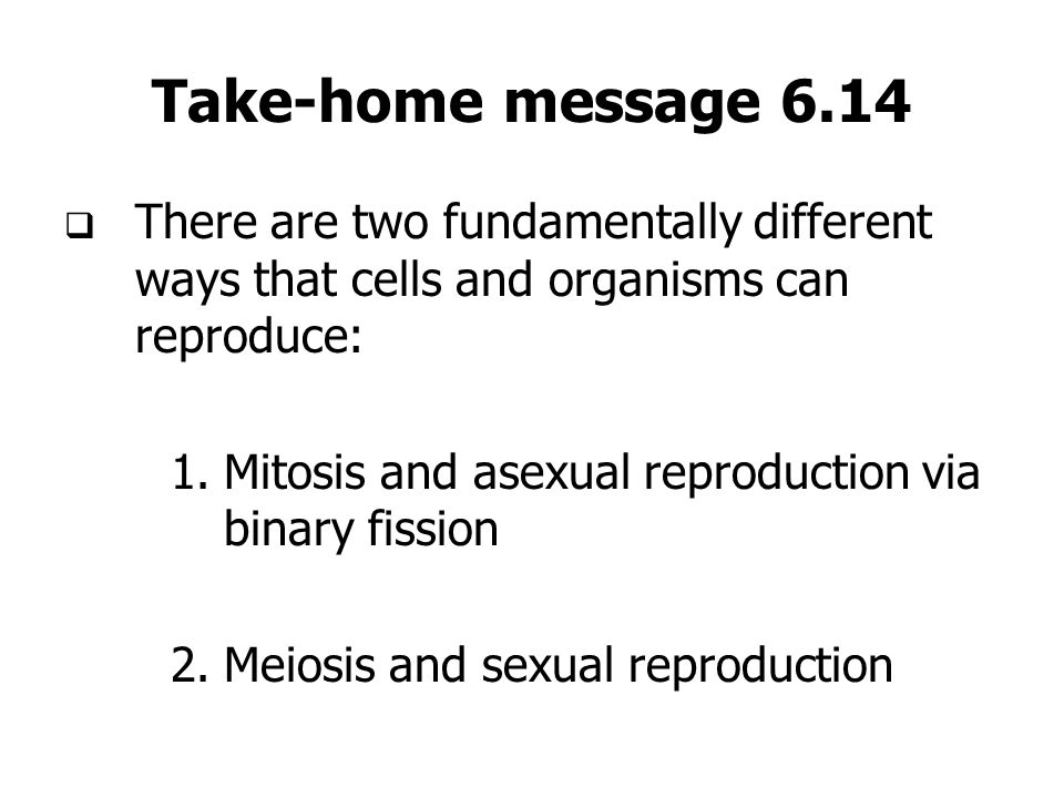 Take-home message 6.14 There are two fundamentally different ways that cells and organisms can reproduce: 1.Mitosis and asexual reproduction via binar
