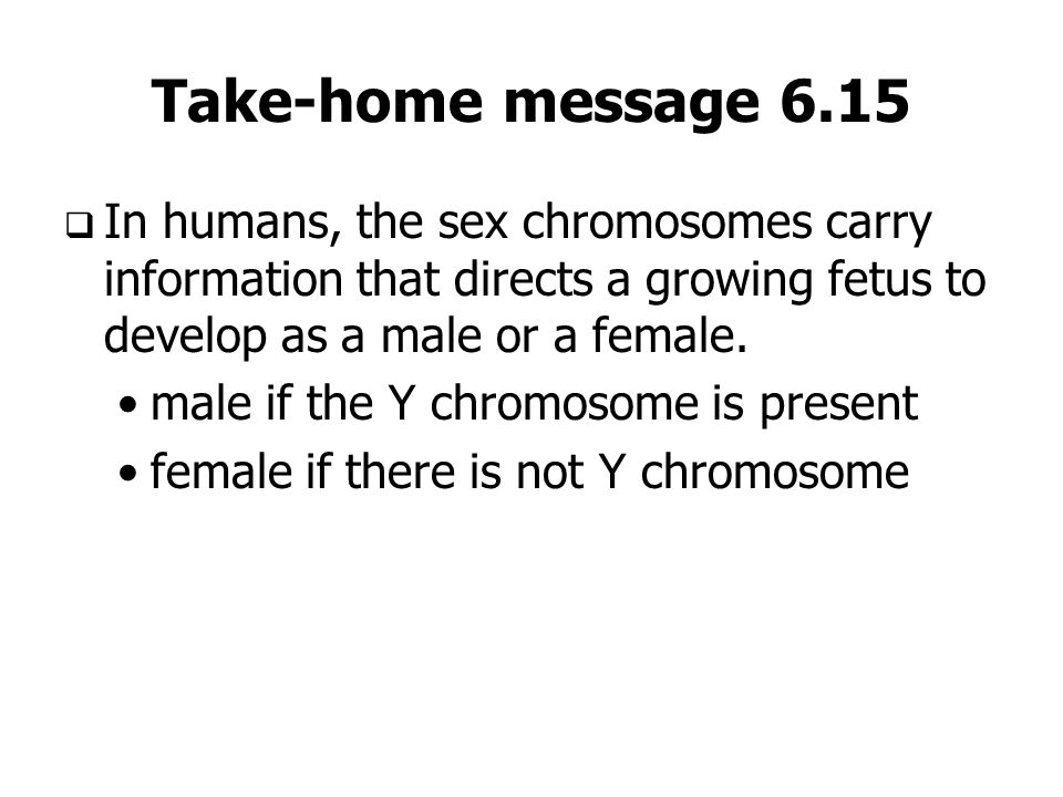 Take-home message 6.15 In humans, the sex chromosomes carry information that directs a growing fetus to develop as a male or a female. male if the Y c