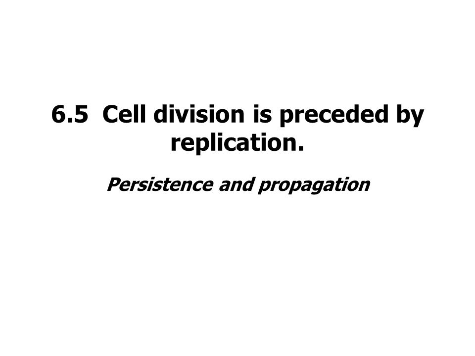 6.5 Cell division is preceded by replication. Persistence and propagation