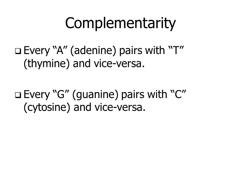 Complementarity Every A (adenine) pairs with T (thymine) and vice-versa. Every G (guanine) pairs with C (cytosine) and vice-versa.