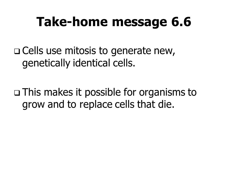 Take-home message 6.6 Cells use mitosis to generate new, genetically identical cells. This makes it possible for organisms to grow and to replace cell