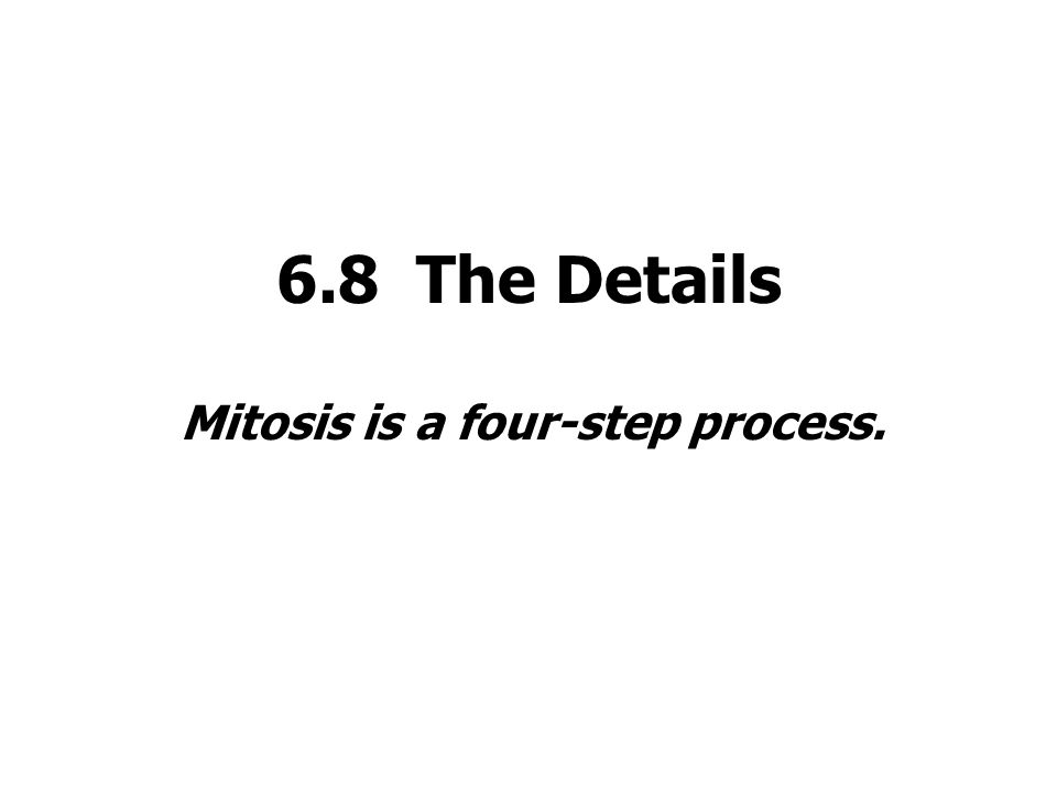 6.8 The Details Mitosis is a four-step process.